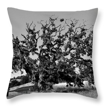 California Roadside Tree - Black And White Throw Pillow