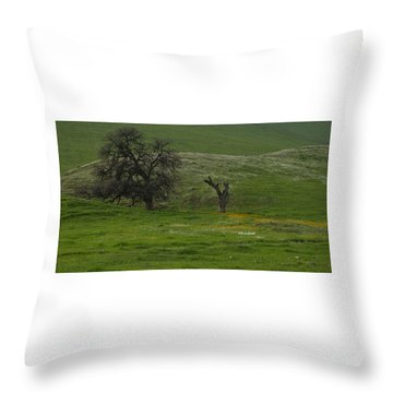 California Rural Springtime Throw Pillow