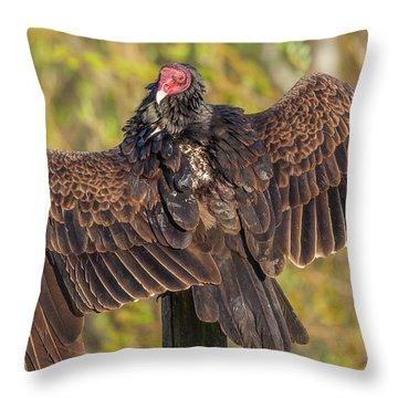 California Spread  Throw Pillow