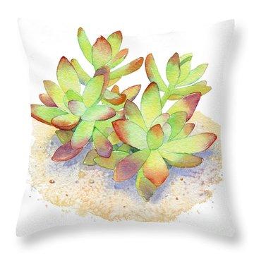 California Sunset Succulent Throw Pillow