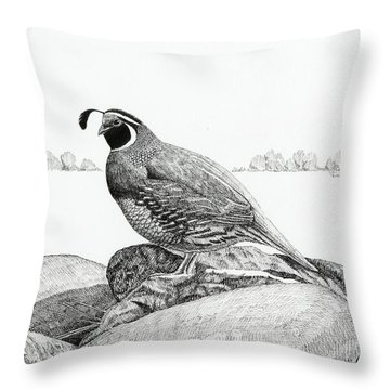 California Valley Quail Throw Pillow