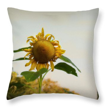 Californian Tuscany Throw Pillow by Cindy Garber Iverson