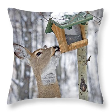 Call Me Tweety Throw Pillow
