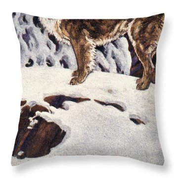 Call Of The Wild, 1903 Throw Pillow by Granger