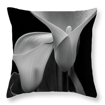 Throw Pillow featuring the photograph Calla Lilies #4895 by David Perry Lawrence