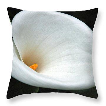 Calla Lilly  Throw Pillow by Carol  Eliassen