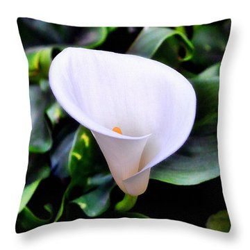 Throw Pillow featuring the photograph Calla Lily by Glenn McCarthy
