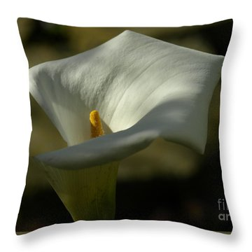 Callasf Throw Pillow