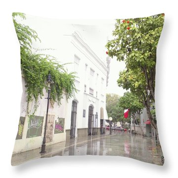Callejon Amor, Ponce, Puerto Rico Throw Pillow