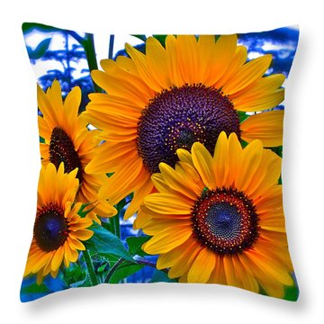 Callie's Crew Throw Pillow by Gwyn Newcombe