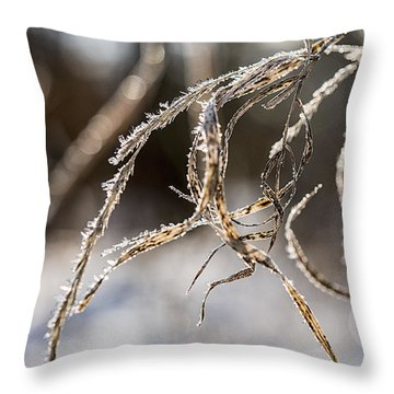 Calligraphy In The Grass Throw Pillow