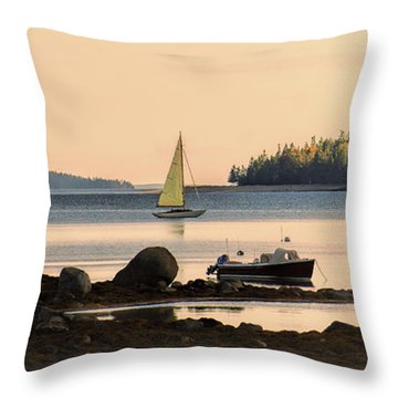 Calling It A Day Throw Pillow