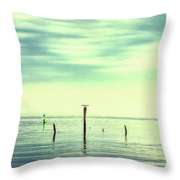 Throw Pillow featuring the photograph Calm Bayshore Morning N0 1 by Gary Slawsky