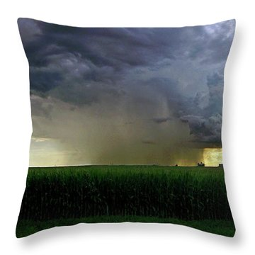 Calm Before The Storm Throw Pillow by Sue Stefanowicz