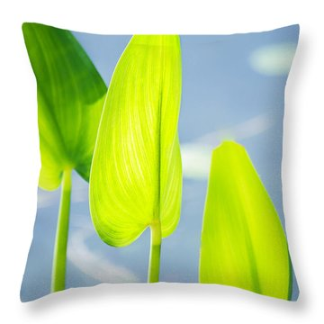 Calm Greens Throw Pillow