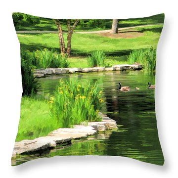 Throw Pillow featuring the painting Calm Lake Ellyn by Christopher Arndt