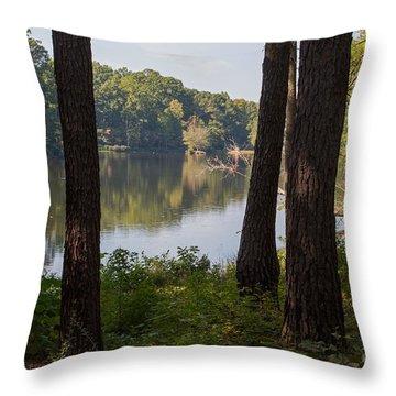 Calm Lake Waters Throw Pillow