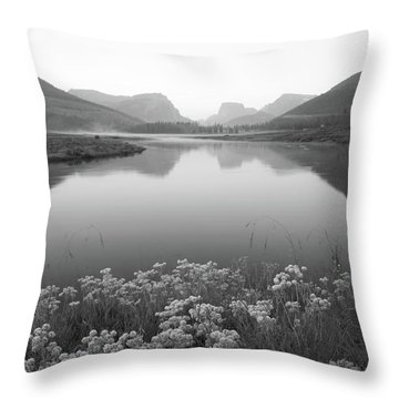 Throw Pillow featuring the photograph Calm Morning  by Dustin LeFevre