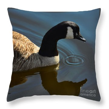 Calm Reflection Throw Pillow