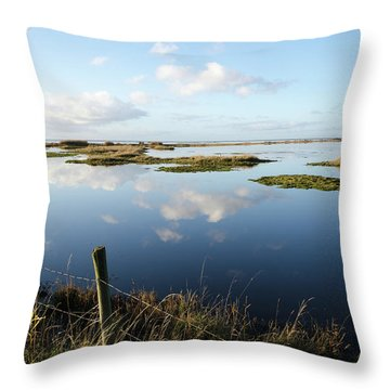 Calm Wetland Throw Pillow