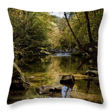 Throw Pillow featuring the photograph Calmer Water by Douglas Stucky