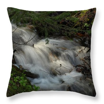 Calming Stream Throw Pillow by DeeLon Merritt