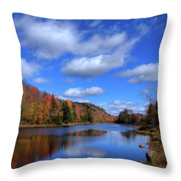 Calmness On Bald Mountain Pond Throw Pillow by David Patterson