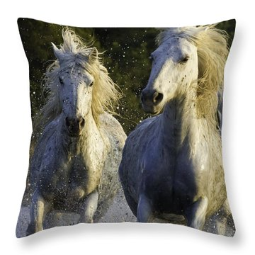 Camargue Spray Throw Pillow by Carol Walker