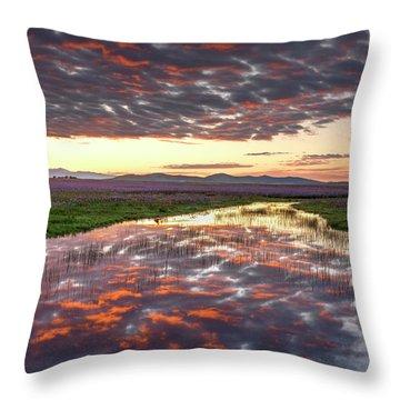 Camas Spring Sunrise Throw Pillow by Leland D Howard