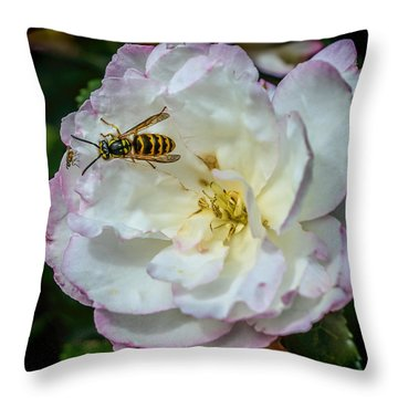 Camelia With Company Throw Pillow