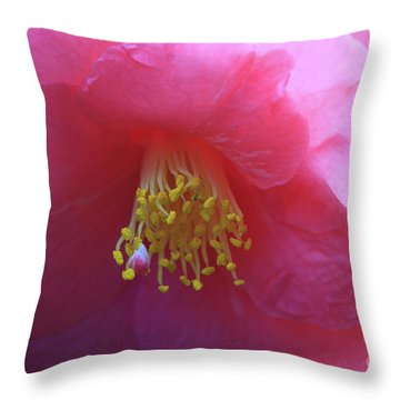 Camellia Japonica Throw Pillow by Louise Heusinkveld