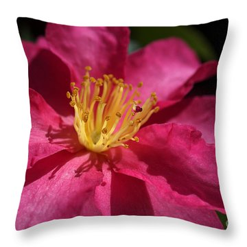 Camellia Sasanqua Throw Pillow