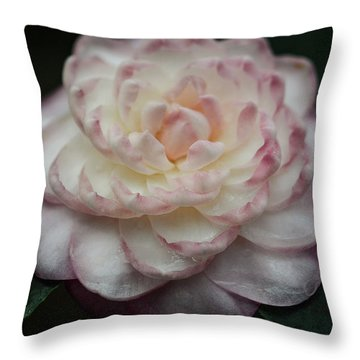 Camellia White And Pink Throw Pillow