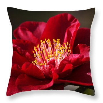 Camellia's In Style Throw Pillow