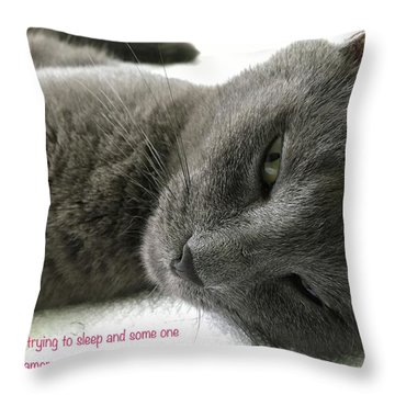 Throw Pillow featuring the photograph Resting Face by Debbie Cundy