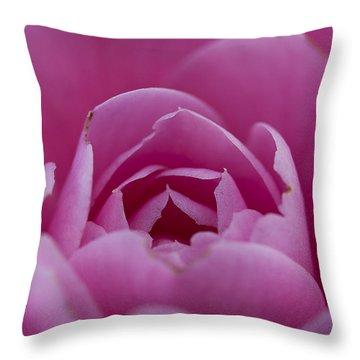 Camellia Close-up Throw Pillow