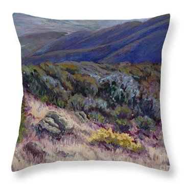 Camino Cielo View Throw Pillow