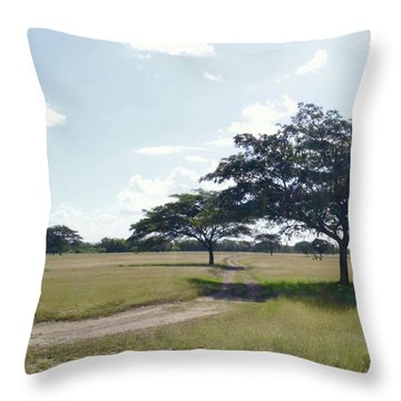 Camino En La Pradera Throw Pillow