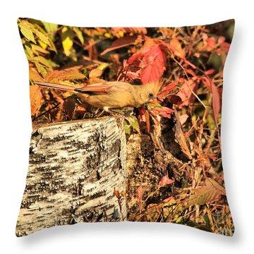 Camo Bird Throw Pillow