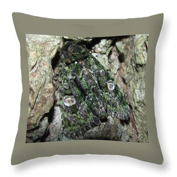 Green Owlet Moth Throw Pillow