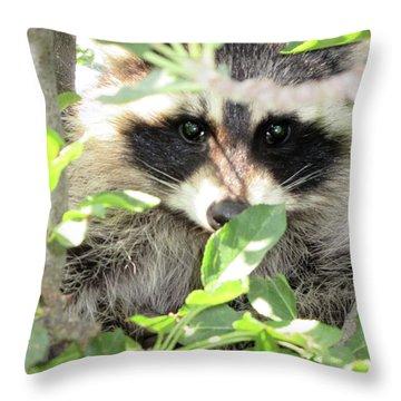 Camo Throw Pillow by Maxine Grossman