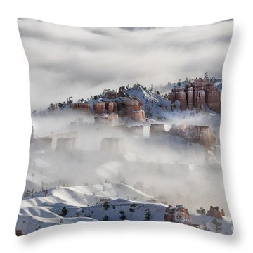 Throw Pillow featuring the photograph Camouflage - Bryce Canyon, Utah by Sandra Bronstein