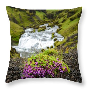 Campion On The Fimmvorduhals Throw Pillow