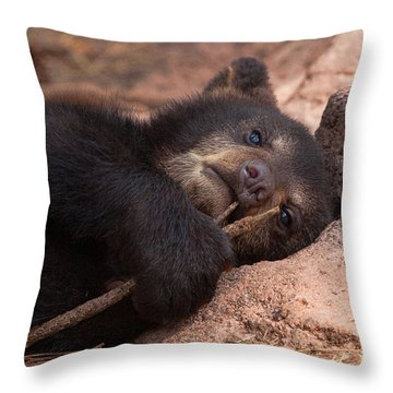 Can I Eat This Throw Pillow by Laurinda Bowling