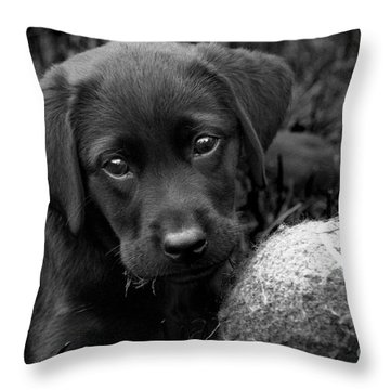 Can We Play  Throw Pillow