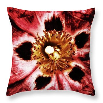 Throw Pillow featuring the photograph Can You Guess What Flower? Hints: It's by Mr Photojimsf