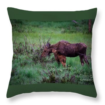 Can You Keep A Secret Throw Pillow