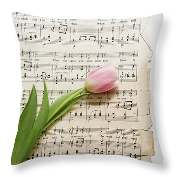 Throw Pillow featuring the photograph Can You by Kim Hojnacki
