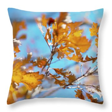 Can You Paint With All The Colors Of The Wind? Throw Pillow