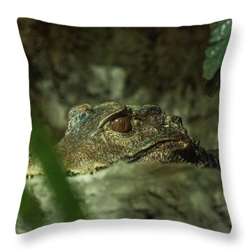 Can You See Me Throw Pillow